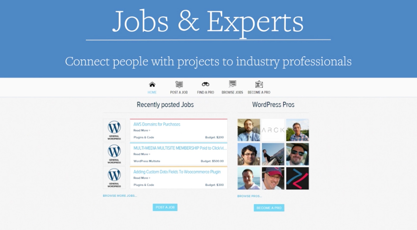 wpmu Dev Jobs and Experts Vtičnik