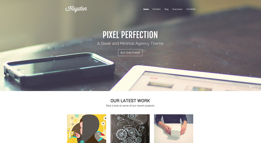 Tema Hayden Premium Agency WordPress