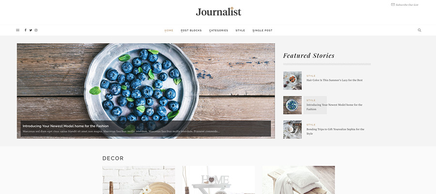Journalistmagasin WordPress Theme