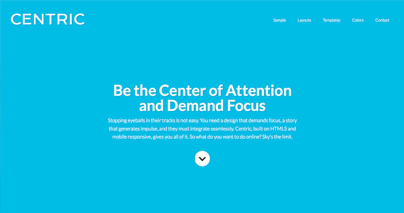 centric-wp-theme
