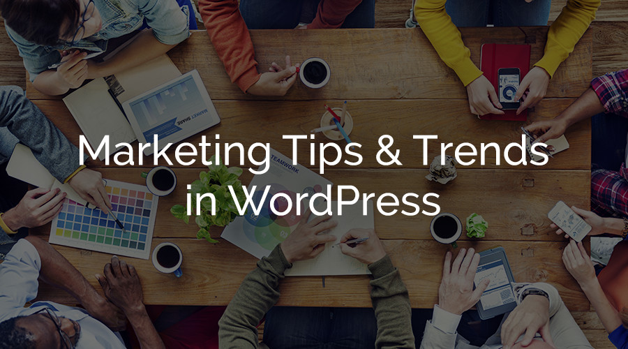 Consejos y tendencias de marketing de WordPress